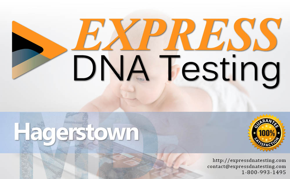 Paternity Testing Hagerstown, MD