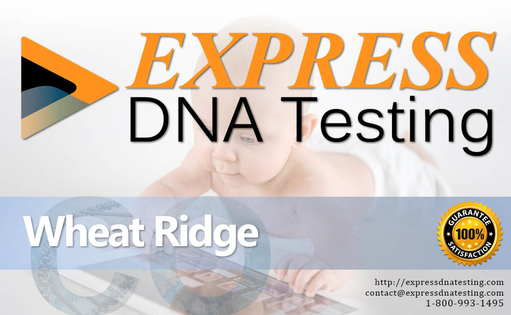 Paternity Testing Wheat Ridge, CO